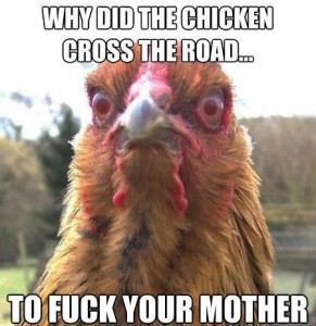 Why did the chicken